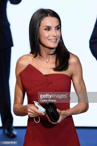 Queen Letizia of Spain attends a dinner in honour of 'Mariano de Cavia', 'Mingote' and 'Luca de Tena' Awards celebrating its 100 edition at ABC on...