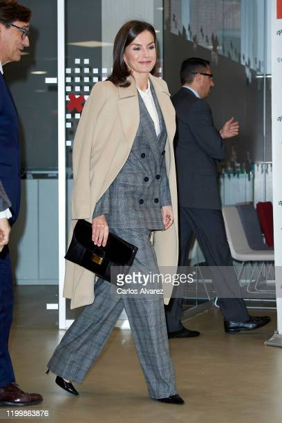 Queen Letizia of Spain attends a meeting at Red Cross headquarters on January 16, 2020 in Madrid, Spain.