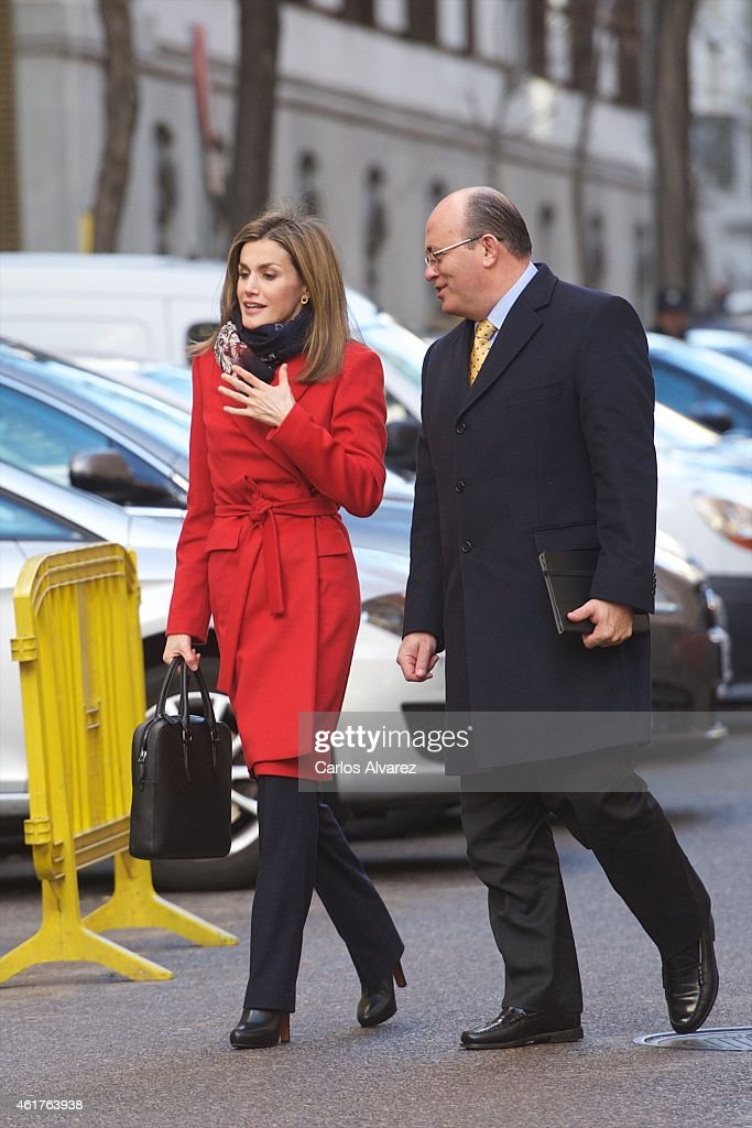 Queen Letizia Of Spain Attends Association Against Cancer Meeting : ニュース写真