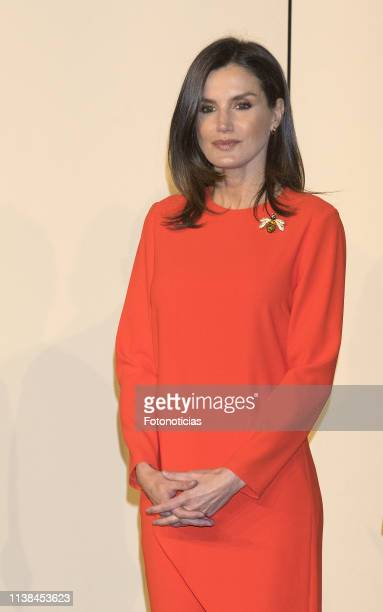 Queen Letizia of Spain attends a meeting with members of the Spanish Community during day two of the official visit of the Spanish Royals at La Rural...