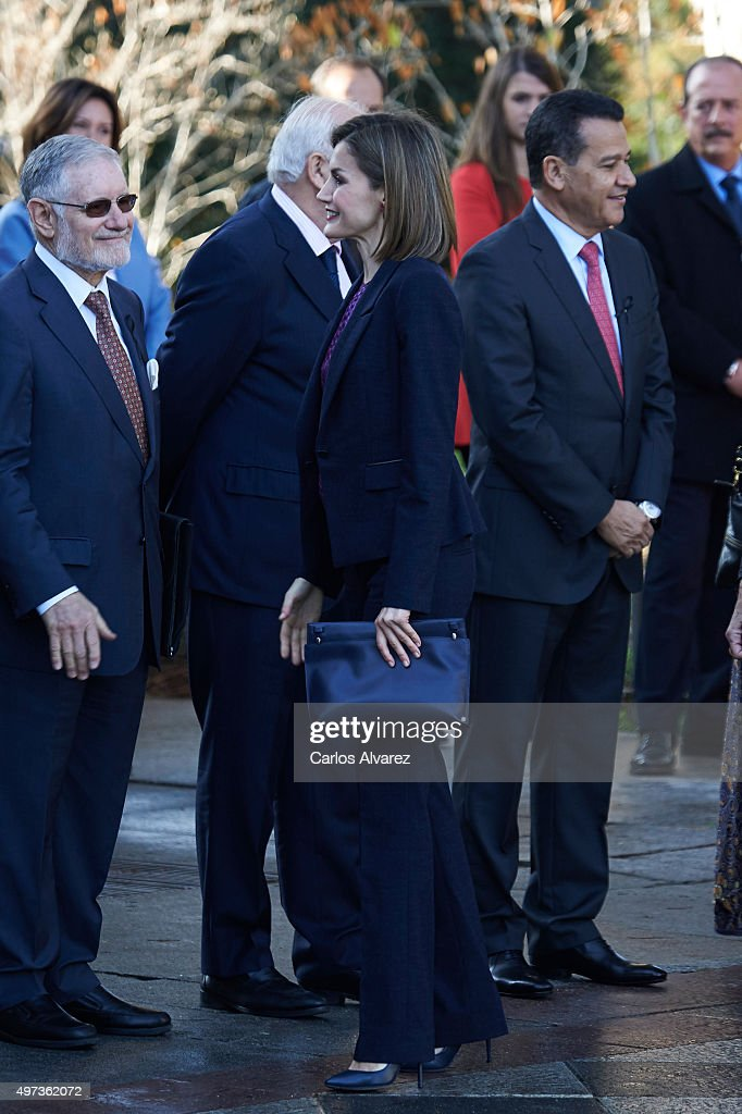 Queen Letizia of Spain Meets 'Mujeres por Africa' Foundation : Fotografía de noticias