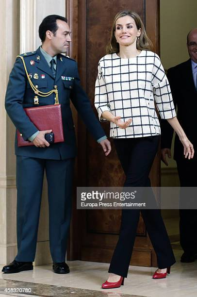 Queen Letizia of Spain attends audiences at Zarzuela Palace on November 3, 2014 in Madrid, Spain.
