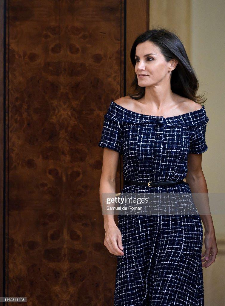 Queen Letizia Of Spain Attends Audiences At Zarzuela Palace : Nachrichtenfoto