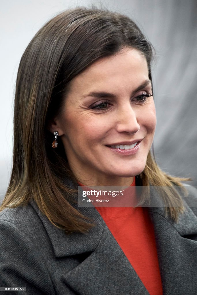Queen Letizia Of Spain Attends A Meeting With FAD Foundation : News Photo
