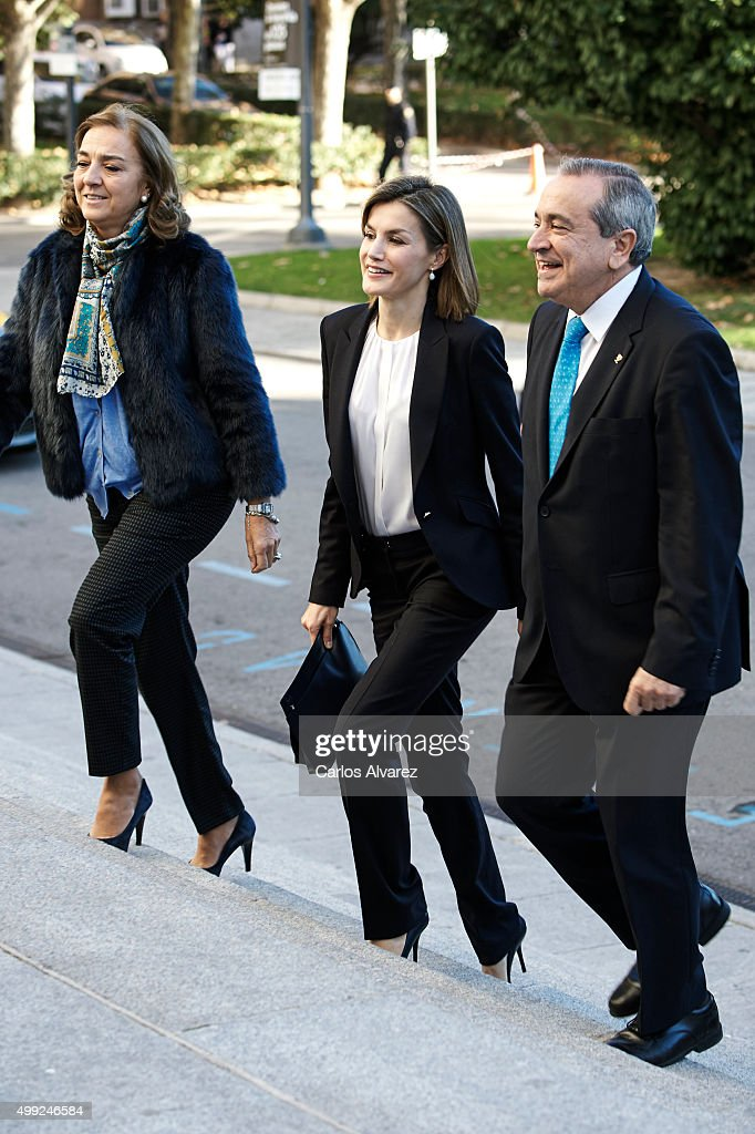 Queen Letizia of Spain (C) attends Nutrigenomics Seminar at the CSIC Institute on November 30, 2015 in Madrid, Spain.