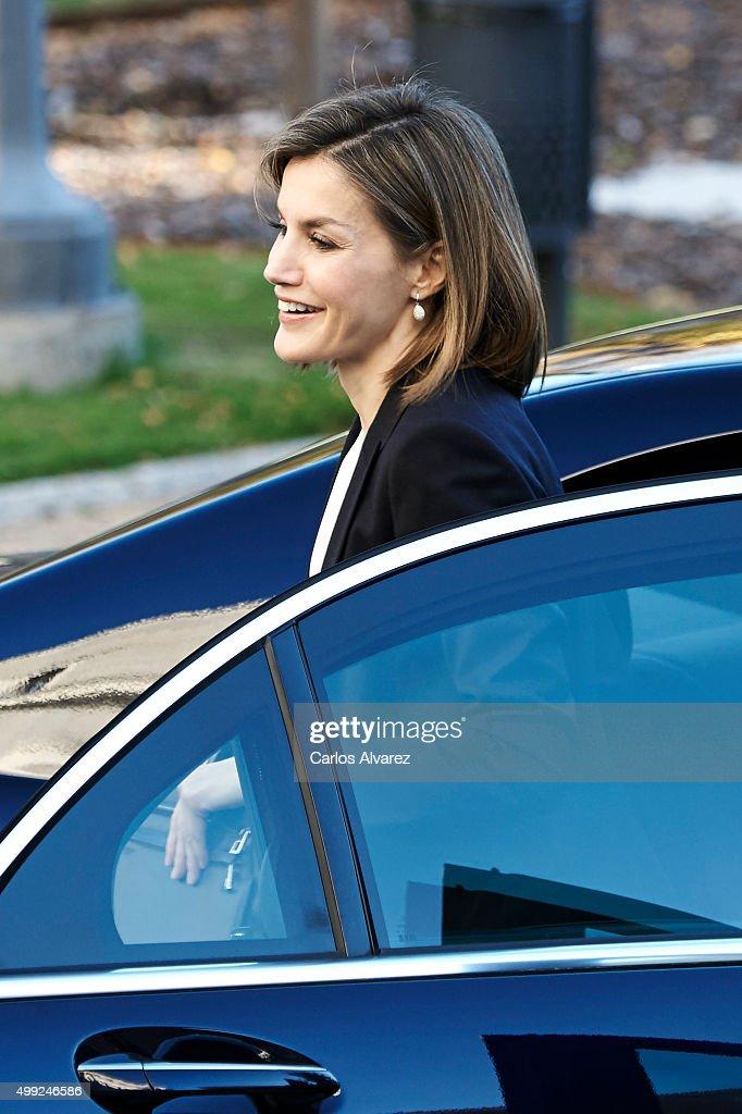 Queen Letizia of Spain attends Nutrigenomics Seminar at the CSIC Institute on November 30, 2015 in Madrid, Spain.