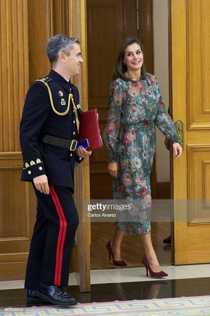 Queen Letizia Of Spain Attends Audicences At Zarzuela Palace : Fotografía de noticias