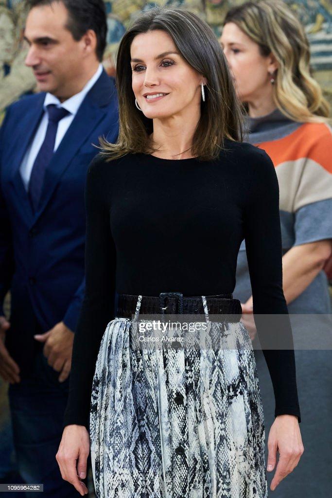 Queen Letizia Of Spain Attend Audiences At Zarzuela Palace : Foto di attualità