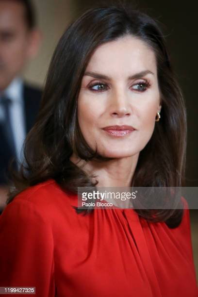 Queen Letizia of Spain attends several audiences at Zarzuela Palace on January 14 2020 in Madrid Spain