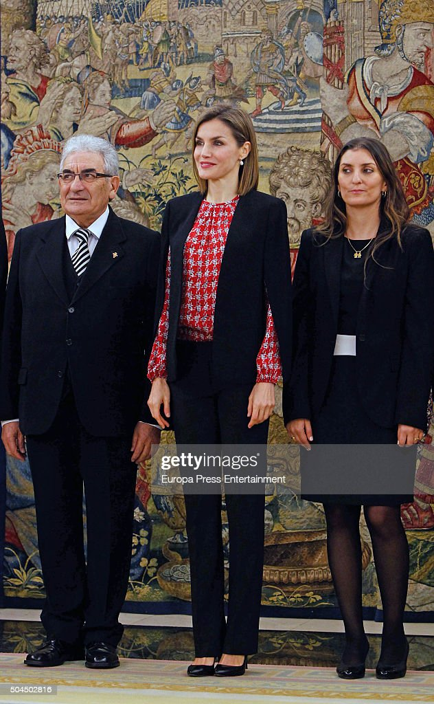 Queen Letizia of Spain (C) attends several audiences at Zarzuela Palace on January 8, 2016 in Madrid, Spain.