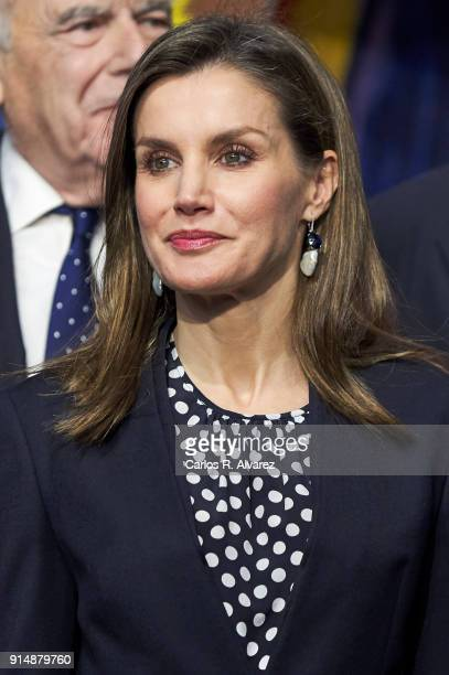 Queen Letizia of Spain attends the Gold Medals of Merit in Fine Arts 2016 ceremony at the Pompidou Center on February 6 2018 in Malaga Spain