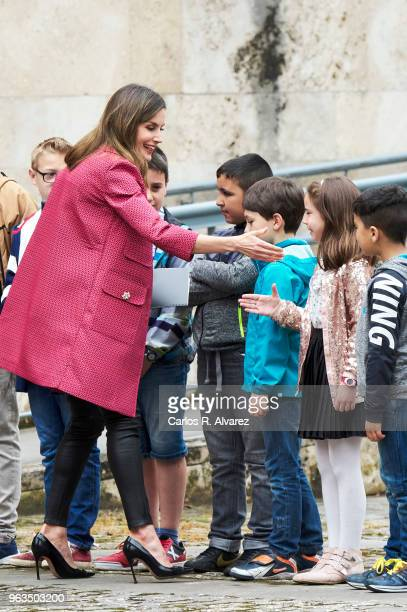 Queen Letizia of Spain attends the inauguration of the 13th International Seminar of Language and Journalism ÔEl Lenguaje en la Era de la PosverdadÕ...