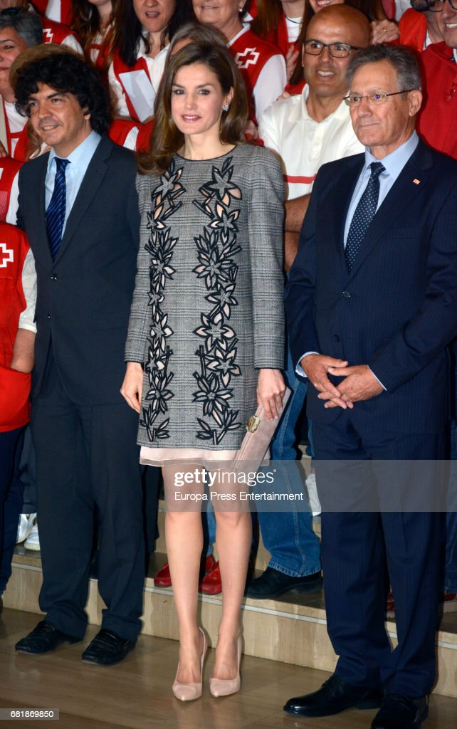 Queen Letizia of Spain Attends the Red Cross World Day Commemoration in Seville : News Photo