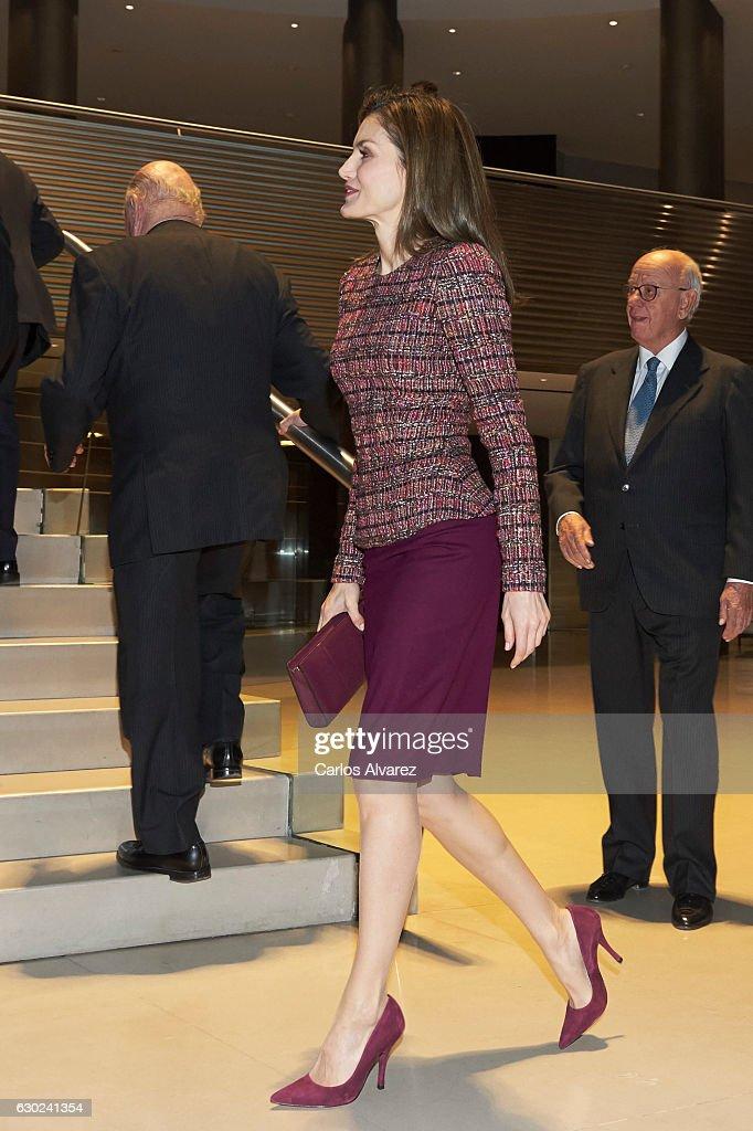 Queen Letizia Of Spain Meets FAD Foundation : ニュース写真