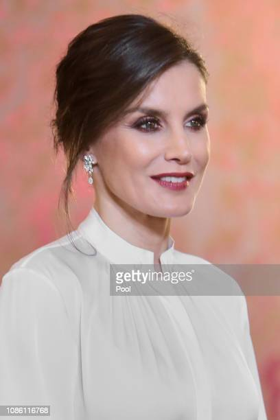 Queen Letizia of Spain receives the Diplomatic Corps at the Zarzuela Palace on January 22 2019 in Madrid Spain