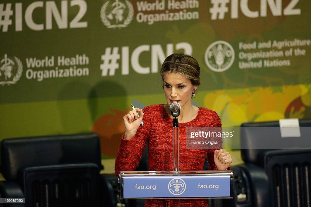 Queen Letizia of Spain speaks during the Second International Conference on Nutrition in the Plenary Hall at the Fao Headquarter on November 20, 2014 in Rome, Italy.