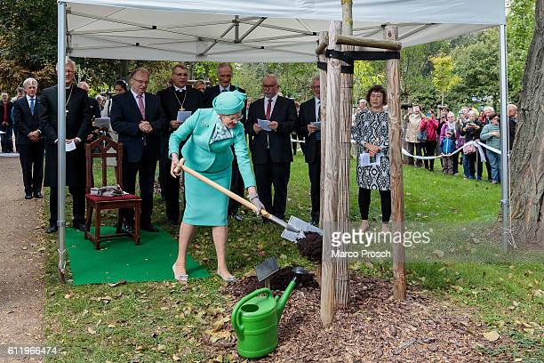 Queen Margrethe II of Denmark plants a tree in the Luther Garden after the reopening of the Castle Church on October 2 2016 in Wittenberg Germany