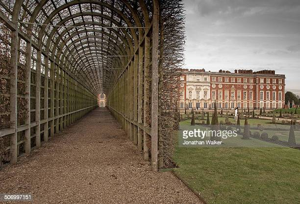 CONTENT] Queen Mary's Bower tunnel it's Hornbeam plants bare Hampton Court Palace Royal Borough of Richmond
