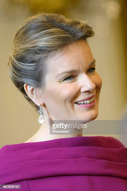 Queen Mathilde of Belgium greet diplomats during a meeting to celebrate the new year at the Royal Castle on January 14 2014 in Brussels Belgium