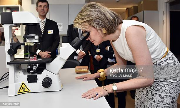 Queen Mathilde of Belgium looks through a microscope during a visit to the Centre for Human Genetics of the Catholic University of Leuven on June 22...