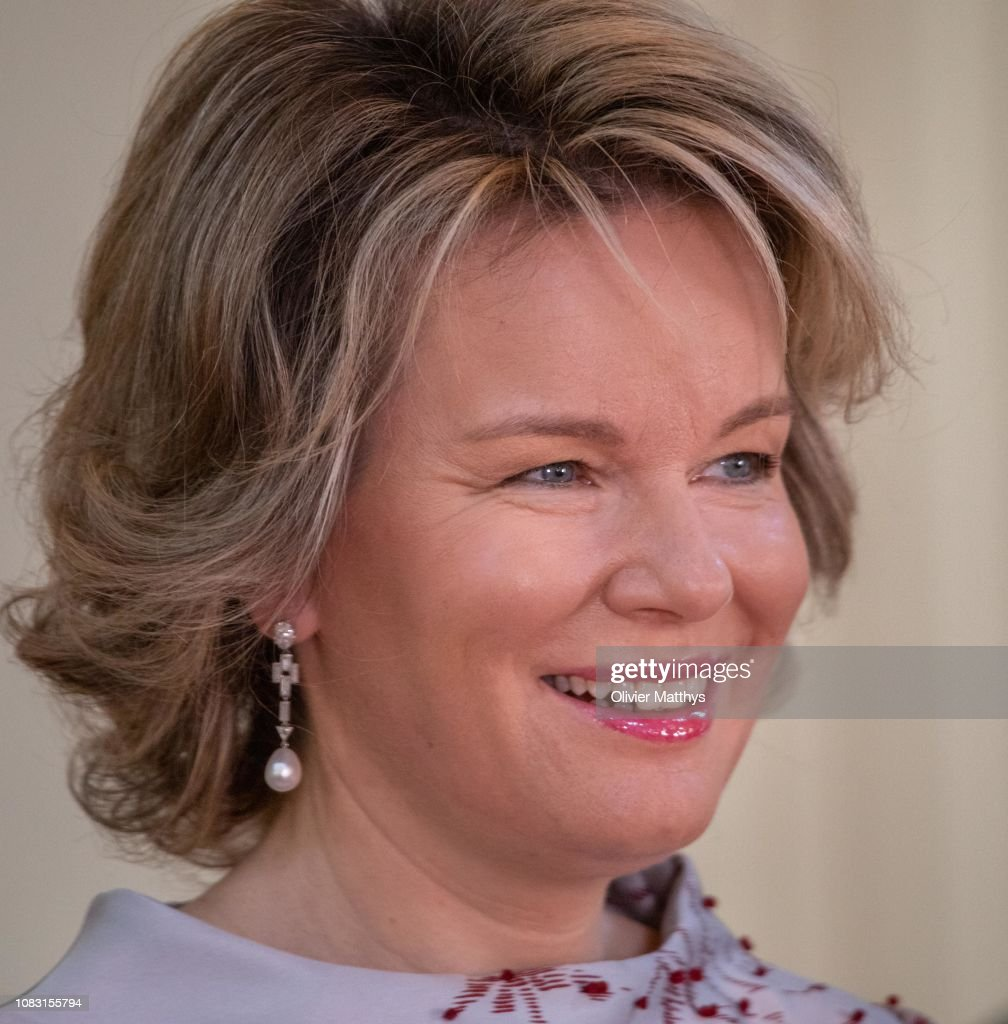 King Philippe of Belgium and Queen Mathilde Receive The Heads Of Diplomatic Missions Based In Belgium at the Royal Castle : News Photo