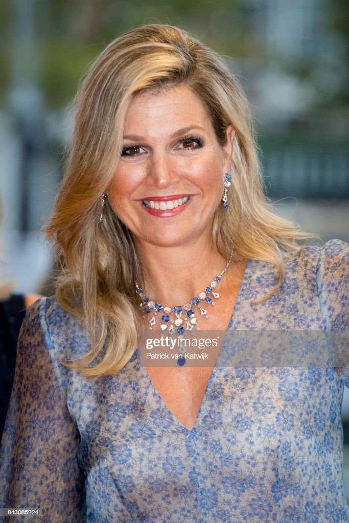 Queen Maxima Attends Charity Gala Diner For Princess Maxima Center For Oncology in Amsterdam