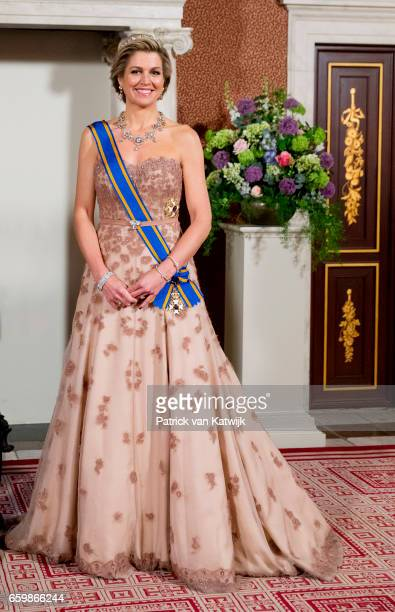 Queen Maxima of The Netherlands pose for an official photo ahead the state banquet for the Argentinean president in Amsterdam on March 27 2017 in...