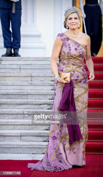Queen Maxima of The Netherlands visits with King Willem-Alexander of The Netherlands Schloss Bellevue where German President Frank-Walter Steinmeier...