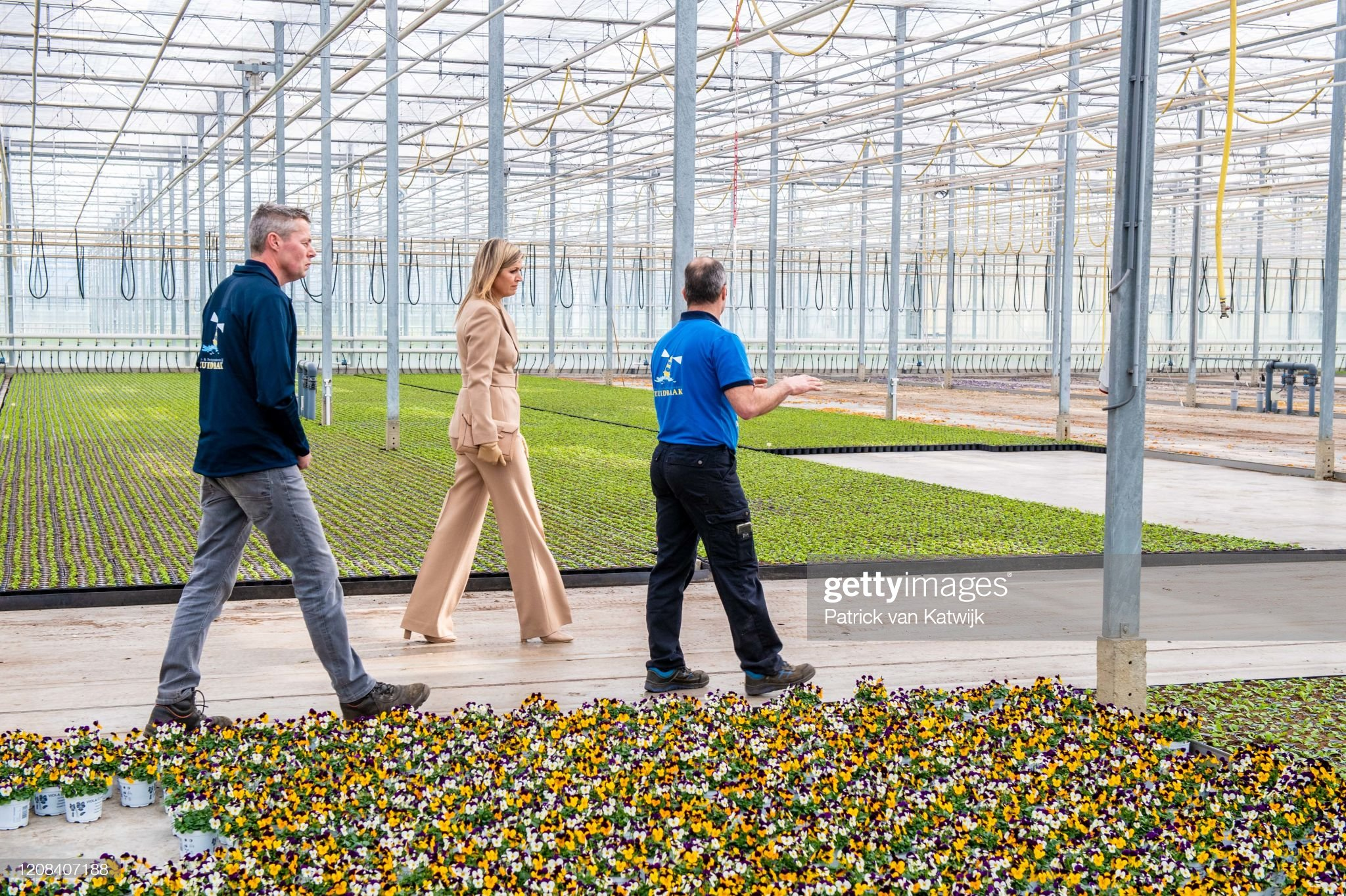 https://media.gettyimages.com/photos/queen-maxima-of-the-netherlands-visits-zuidbaak-floriculture-company-picture-id1208407188?s=2048x2048