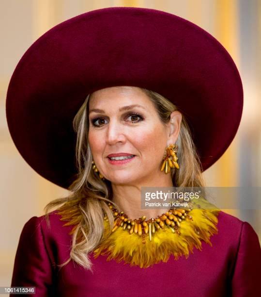 Queen Maxima of the Netherlands welcome Alexander van der Bellen President of Austria and his wife Doris Schmidauer at Palace Noordeinde for an...