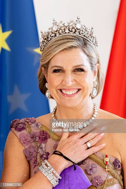 Queen Máxima of The Netherlands visits Schloss Bellevue where German President Frank-Walter Steinmeier and his wife Elke Büdenbender offer the King...