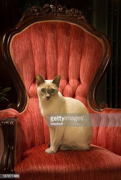 Queen en el trono