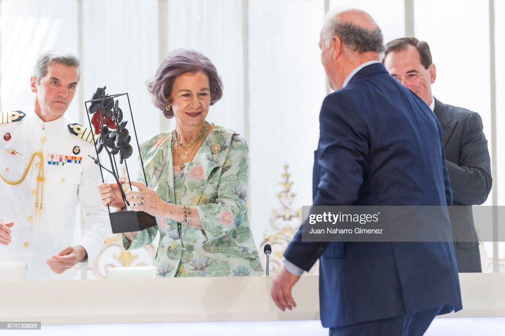 Queen Sofia Attends Mapfre Foundation Awards 2017