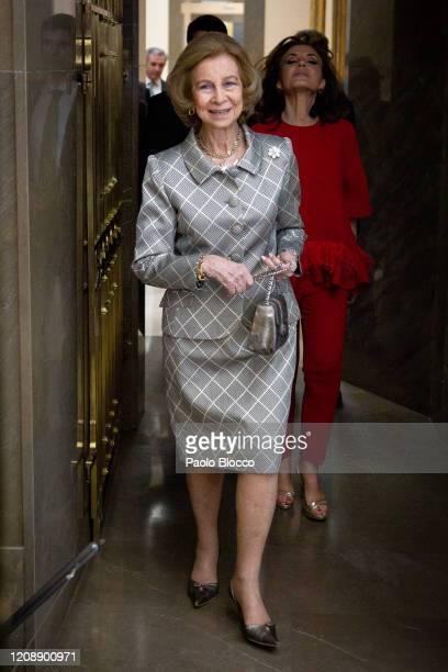 Queen Sofia attends 'Ibero American de Mecenazgo Callia' awards at Real Academia de Bellas Artes on February 26, 2020 in Madrid, Spain.