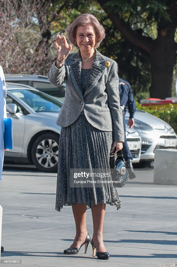 Queen Sofia attends 'La Paz' Hospital 50th Anniversary' on November 16, 2015 in Madrid, Spain.