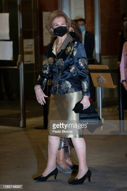 Queen Sofia attends the Extraordinary Concert to Benefit the Annual Scholarships for the Extension of Studies abroad of Musical Youth of Madrid at...