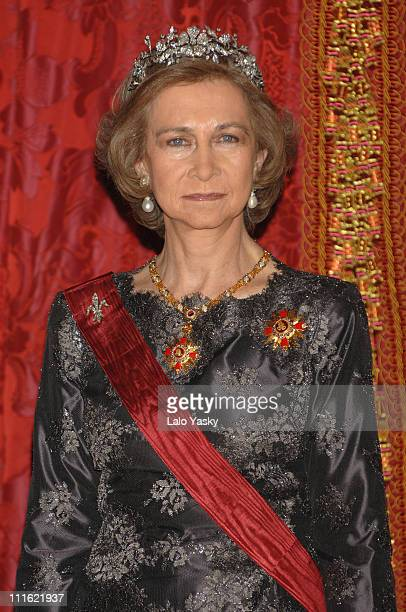 Queen Sofia during Spanish Royals Receive South Korean President February 12 2007 at Royal Palace in Madrid Spain