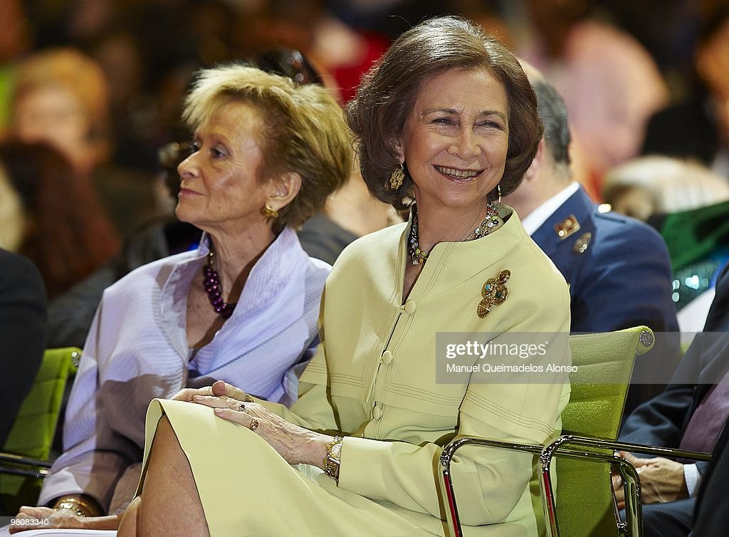 Queen Sofia of Spain Attends 'V International Meeting Spain- Africa'