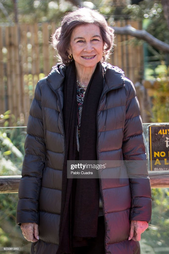 Queen Sofia Attends Official Act For The Conservation of Giant Panda Bears