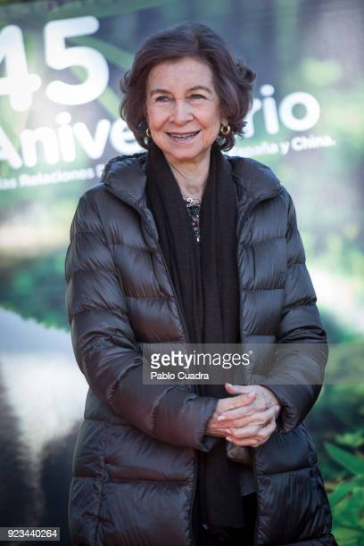 Queen Sofia of Spain attends an official act for the conservation of giant panda bears at the Zoo Aquarium on February 23 2018 in Madrid Spain