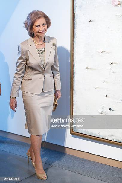 Queen Sofia of Spain attends Inauguration of 'IV Bienal Contemporary Art by ONCE Foundation' at Centro Cultural Conde Duque on September 20 2012 in...