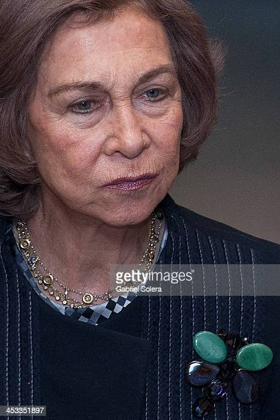 Queen Sofia of Spain attends 'Network of Cities For Accesibility' at Ministry of Health on December 3 2013 in Madrid Spain