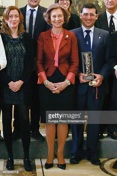 Queen Sofia of Spain attends 'Queen Sofia Against Drugs Awards' at Zarzuela Palace on November 27 2013 in Madrid Spain