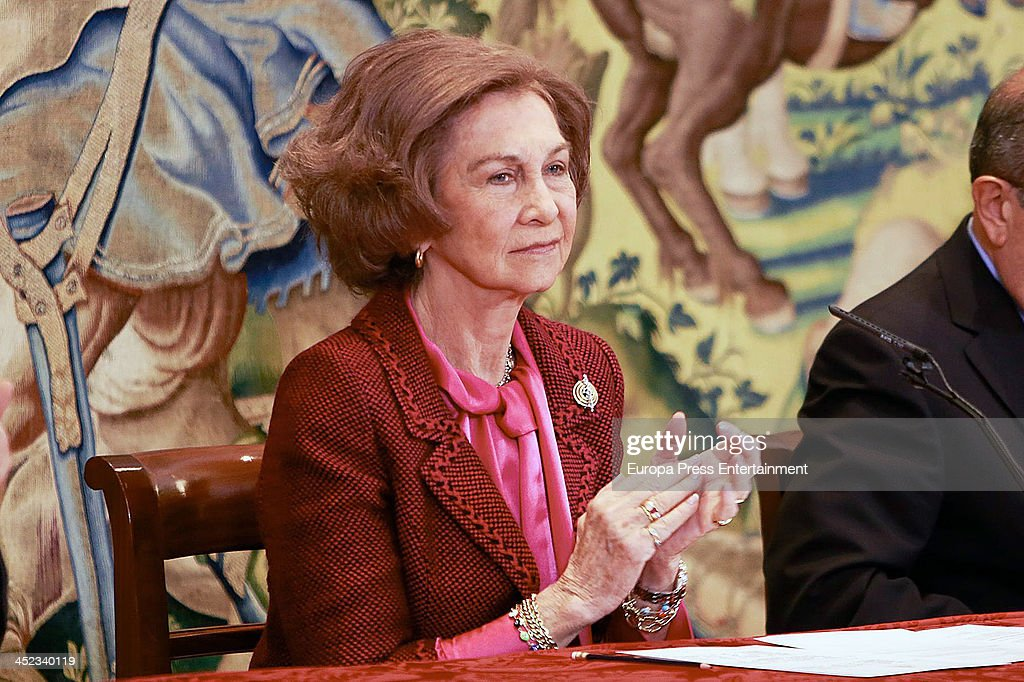Queen Sofia of Spain attends 'Queen Sofia Against Drugs Awards' at Zarzuela Palace on November 27, 2013 in Madrid, Spain.