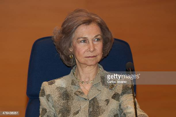 """Queen Sofia of Spain attends the opening of the training course on """"Cyber Crime Investigation Against Children"""" on March 3, 2014 in Madrid, Spain."""
