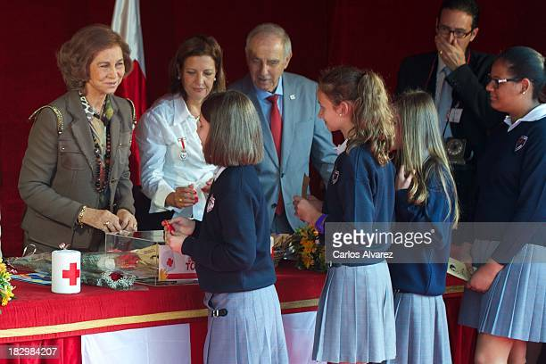 Queen Sofia of Spain attends the Red Cross Fundraising Day 2013 on October 3 2013 in Madrid Spain