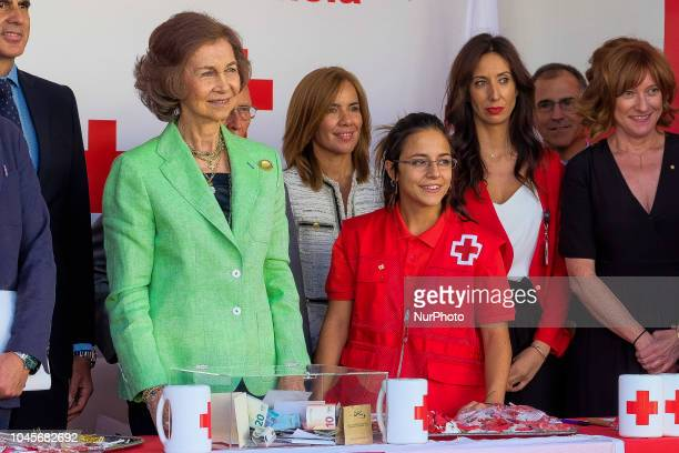 Queen Sofia of Spain attends the Red Cross World Day on October 4, 2018 in Madrid, Spain
