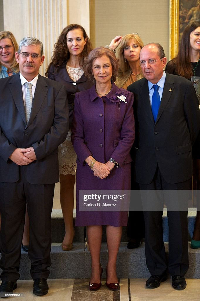 Queen Sofia of Spain Attends 'Reina Sofia Awards Against Drugs' 2012 : News Photo
