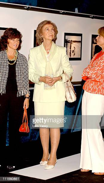 Queen Sofia of Spain during Dressed to Make History 18602004 Opened by Queen Sofia of Spain at Circulo de Bellas Artes Madrid in Madrid Spain