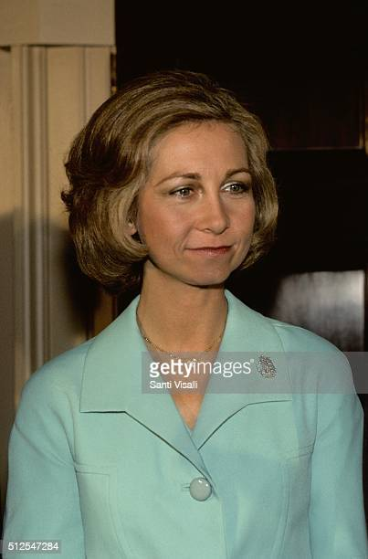 Queen Sofia of Spain posing for a photo on November 11 1976 in Washington DC Washington